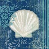 Navy Blue Spa Shells III