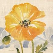 Watercolor Poppies VI