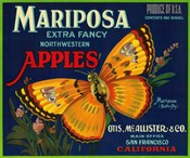 Mariposa Apples Butterfly Ad