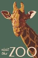 Visite The Zoo Giraffe
