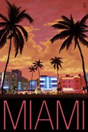 Miami City Palms Scene