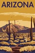 Arizona Cactus Scene