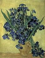 Irises(1890)