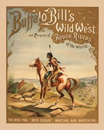 Buffalo Bills Wild West I
