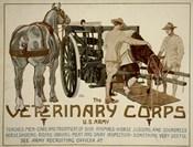 Veterinary Corps