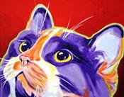 Cat Issa