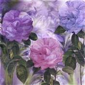 Purple Dream III