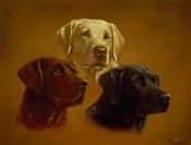Portrait of Three