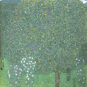 Roses Under The Trees,  c. 1905