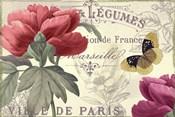 Petals of Paris V