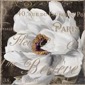 Fleurs Blanc III