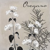 Flowering Herbs II