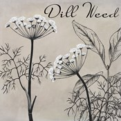 Flowering Herbs III