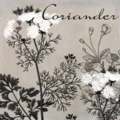 Flowering Herbs IV