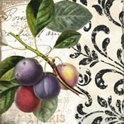 Les Fruits Jardin III