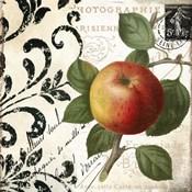 Les Fruits Jardin IV