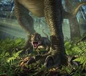 Baby Tyrannosaurus Rex