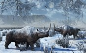 Woolly Rhinoceros in Winter