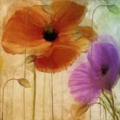 Penchant For Poppies II