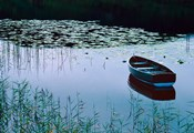 Rowboat on Lake Surrounded by Water Lilies, Lake District National Park, England