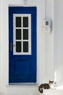 Greece, Aegean Islands, Samos, Door, Cat