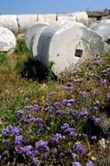 Greece, Cyclades, Delos Ancient Architecture