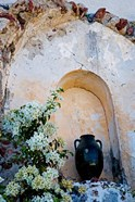 Pottery and Flowering Vine, Oia, Santorini, Greece