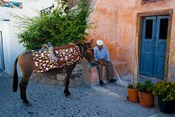 Resting Elderly Gentleman, Oia, Santorini, Greece