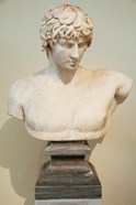 Antinous Bust, Statue, Athens, Greece