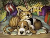 Kitten Pup