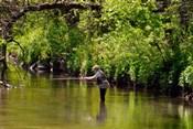 The Fishing Hole