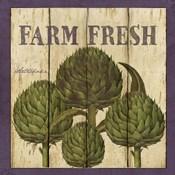 Farm Fresh Artichoke