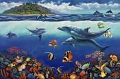 Reef Serenade