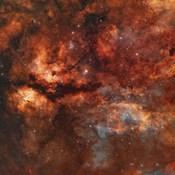 IC 1318 and the Butterfly Nebula around star Gamma-Cygni