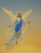 Morning Angel