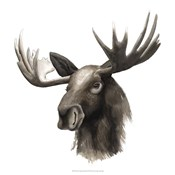 Western Animal Study III