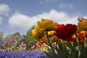 Standing Flowers