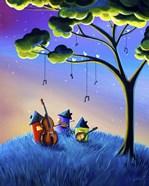 Bluegrass Nights