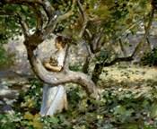 In The Garden, c. 1891