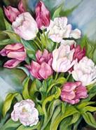 Light Pink And Dark Tulips
