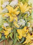 Bright Yellow Lillies