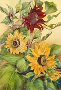 Rust Sunflower