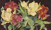 Red And Yellow Parrot Tulips