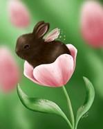 Gossamer Spring