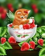 Strawberry Kitten