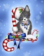 Candy Cane Kitten