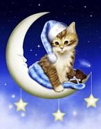 Goodnight Moonlight