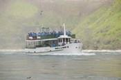 Sightseeing Boat in Niagara Falls