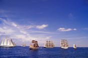 Tall Ships Race in Nova Scotia