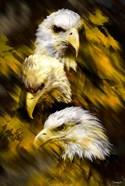 Eagle Three